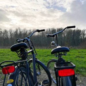 Amsterdam Noord tour by bike