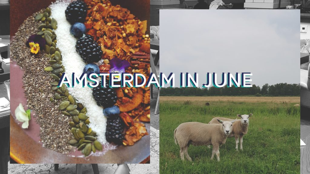 amsterdam in june